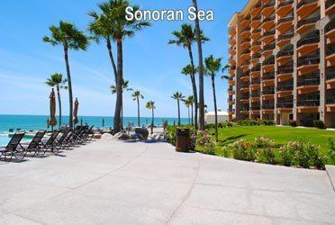 Sonoran Sea Puerto Penasco